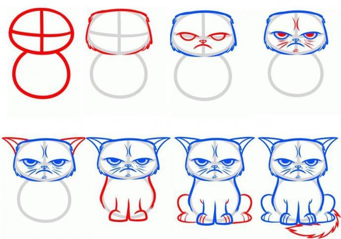 Изображения котов для срисовки, копирования. Более 100 картинок!