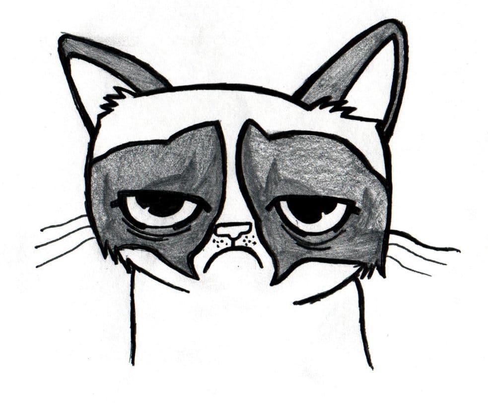 Tlustá černá kočička tumblr