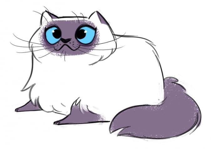Imágenes de gatos para dibujar. ¡Más de 100 fotos! Descargue gratis