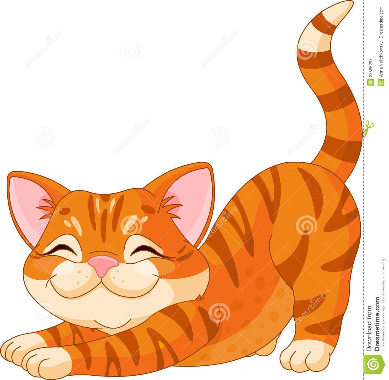 Tumblr dívka kočička