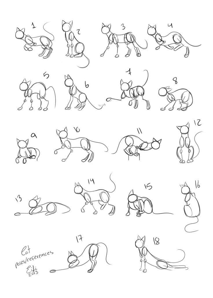 Imágenes De Gatos Para Dibujar Más De 100 Fotos Descargue Gratis
