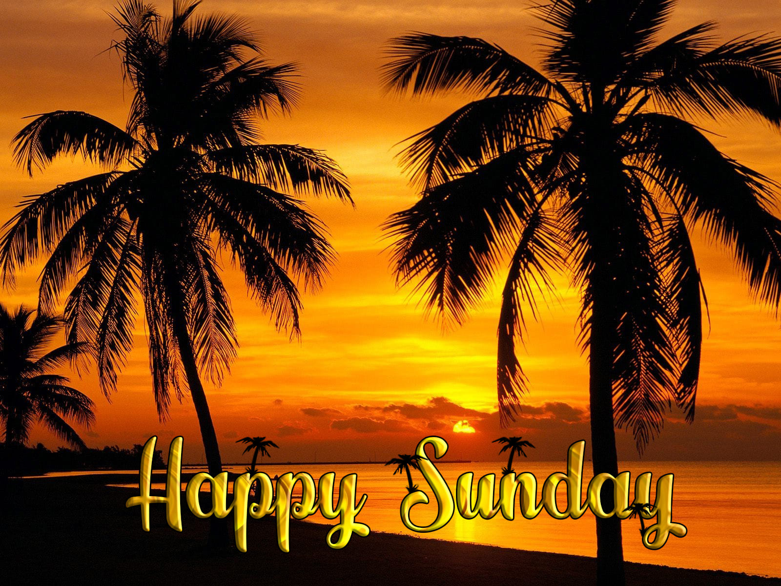 Pictures of Wishes for a Happy Sunday. 20 Beautiful Cards