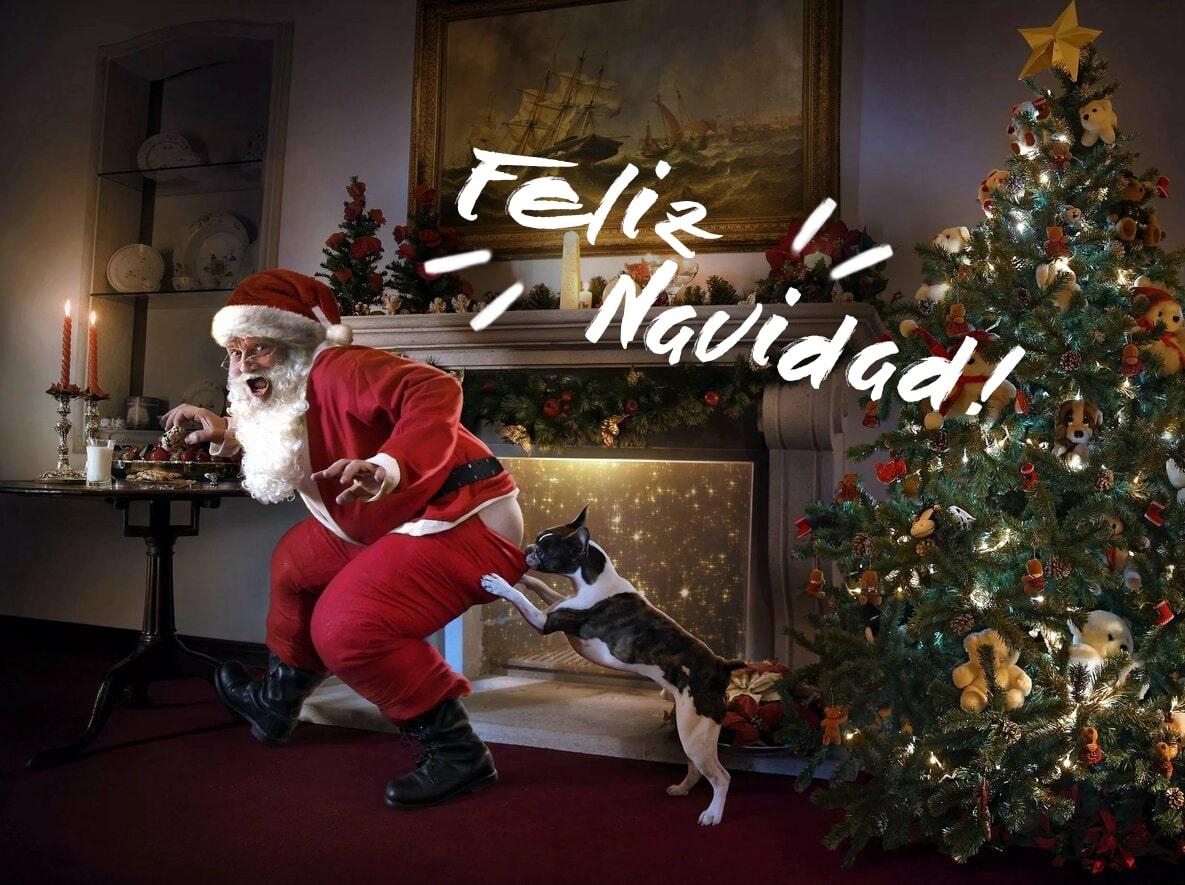 Imágenes de Feliz Navidad. 60 tarjetas de felicitación para Navidad