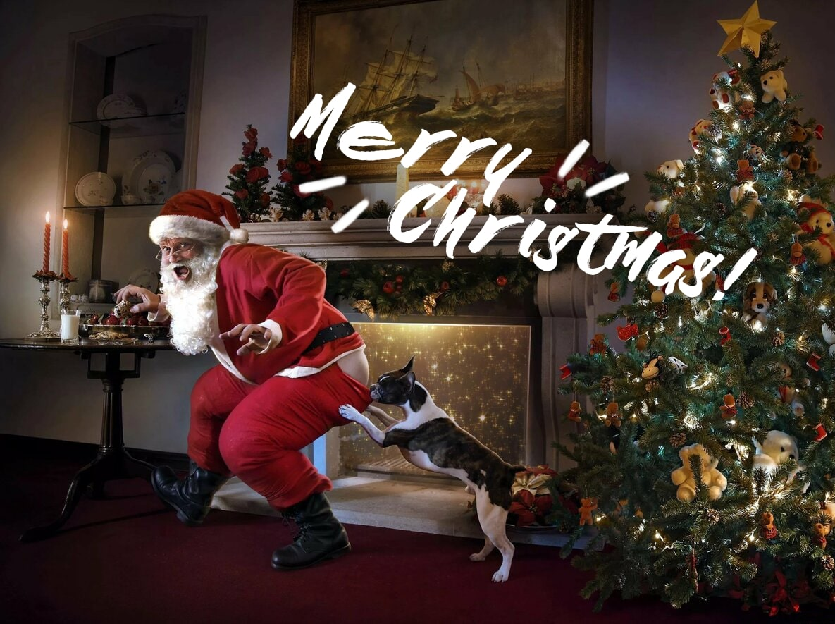 Merry Christmas Images. 60 Greeting Cards For Christmas