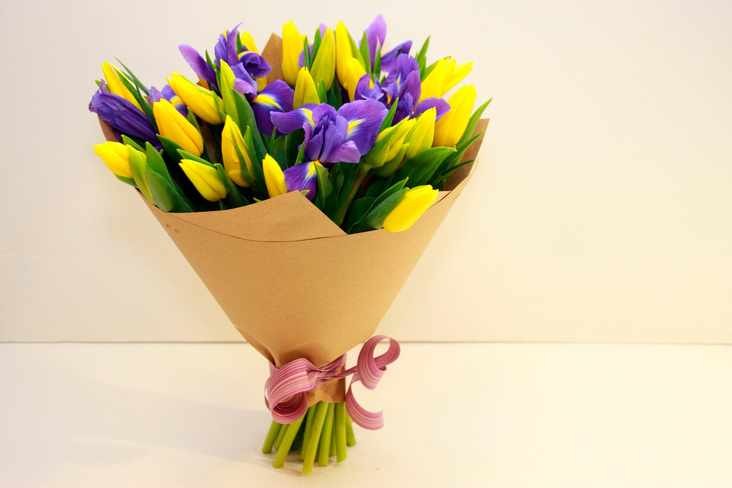 tulip-photo-148