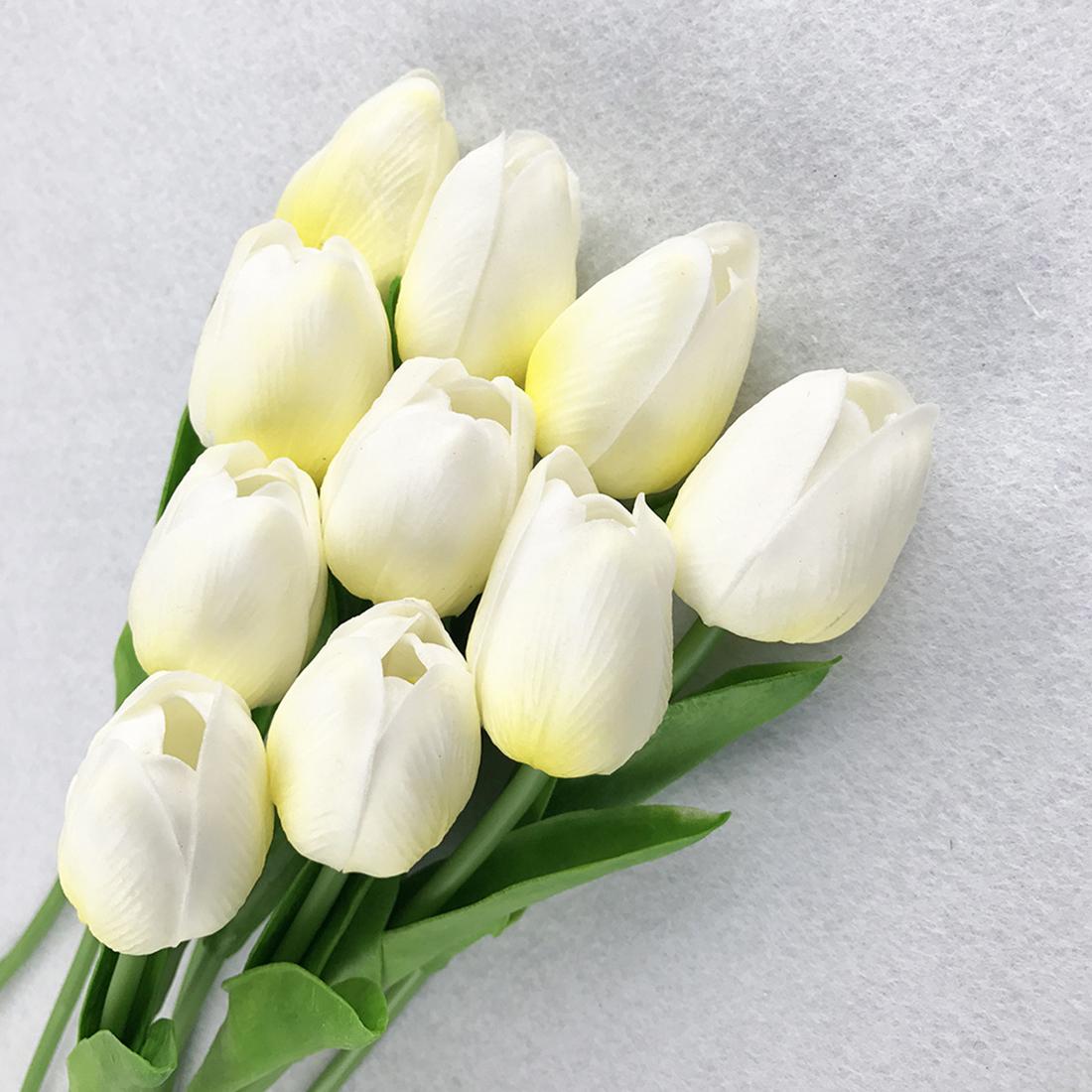 tulip-photo-185