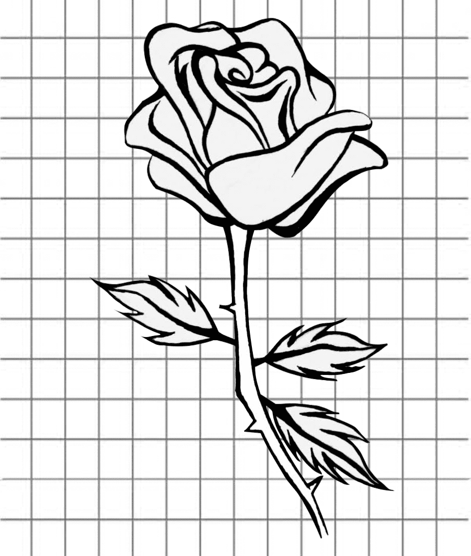flowers-drawing-image-1