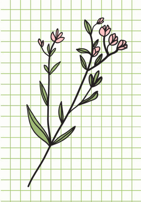 flowers-drawing-image-100