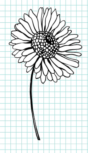 flowers-drawing-image-101
