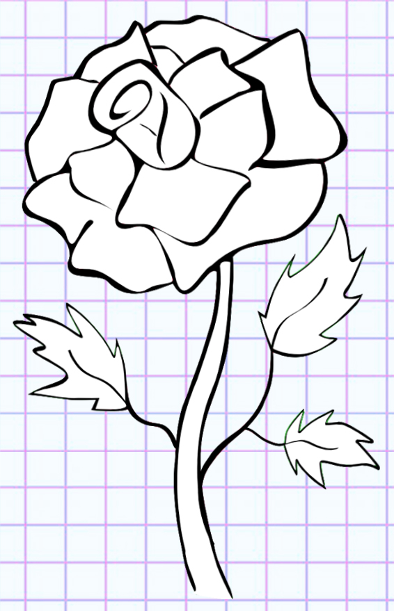 flowers-drawing-image-105
