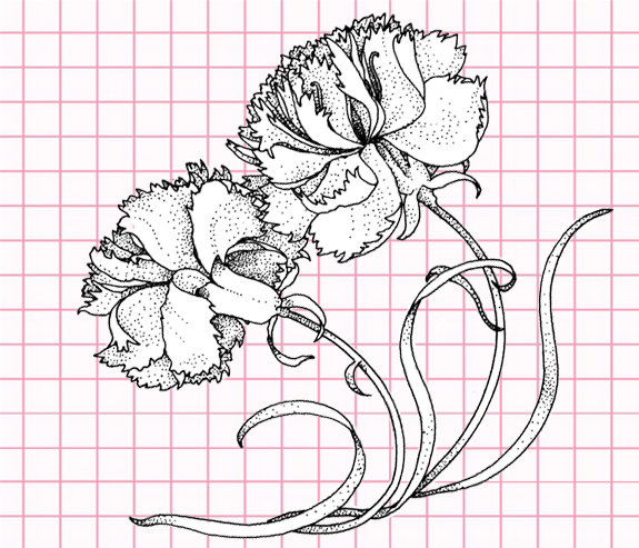 flowers-drawing-image-106