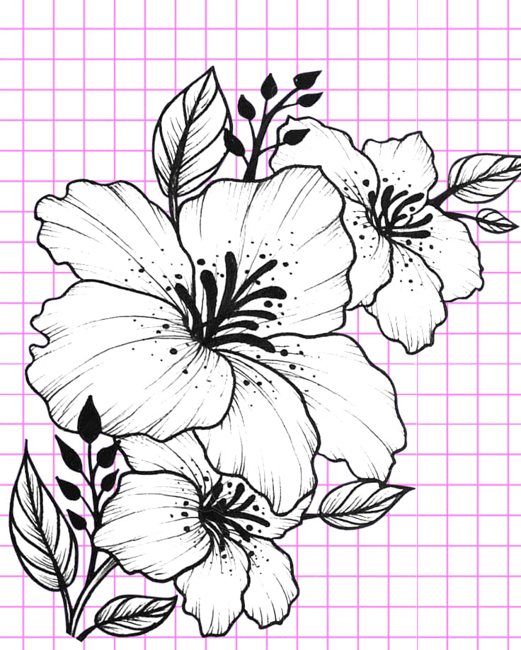flowers-drawing-image-109
