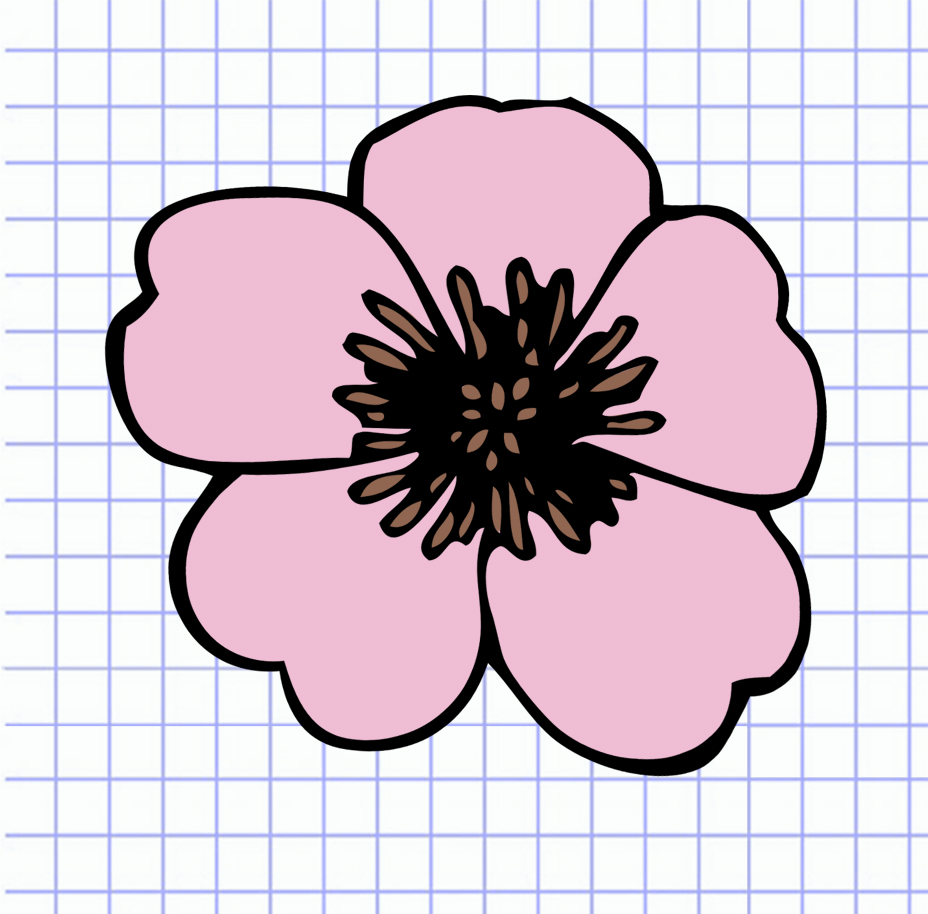flowers-drawing-image-112