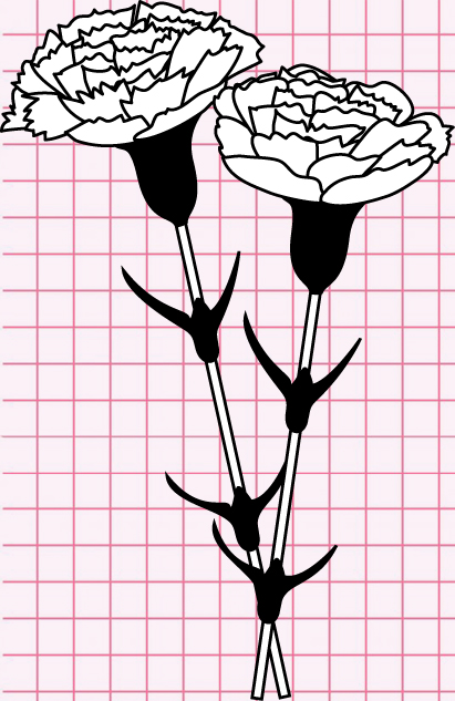 flowers-drawing-image-118