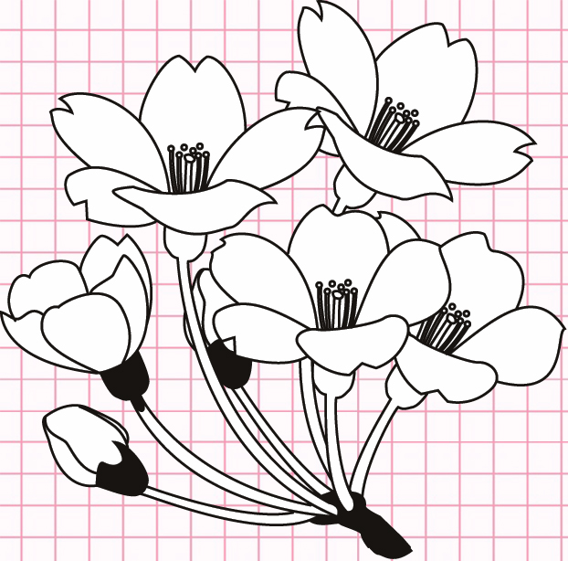 flowers-drawing-image-122