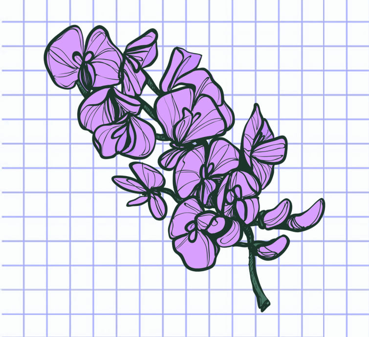 flowers-drawing-image-15