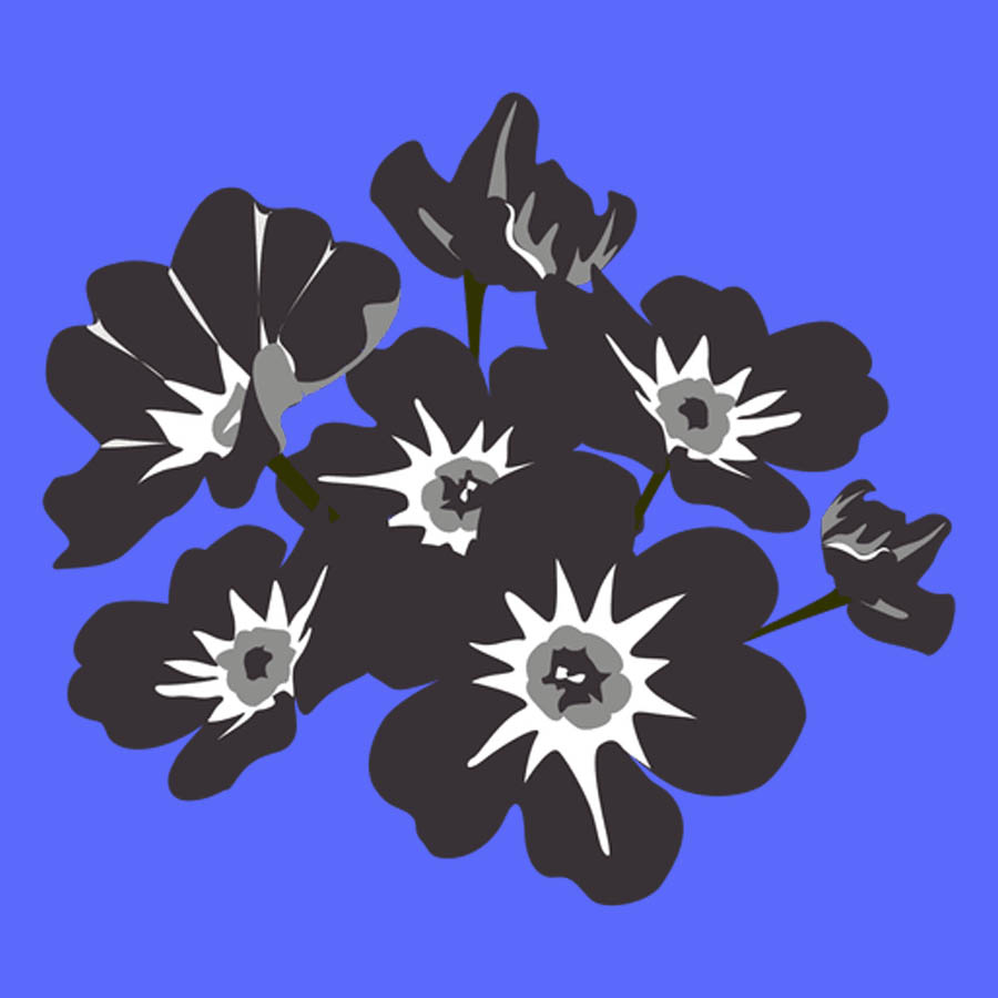 flowers-drawing-image-2-1