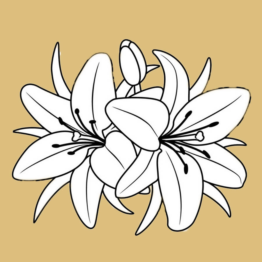 flowers-drawing-image-2-12