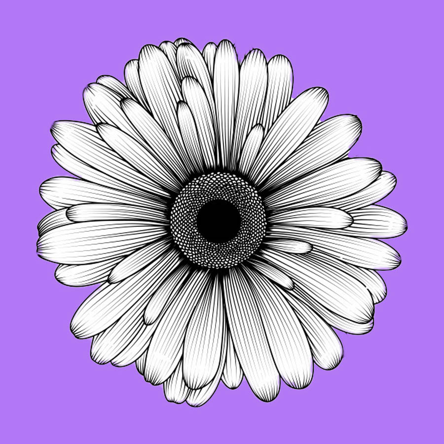 flowers-drawing-image-2-26