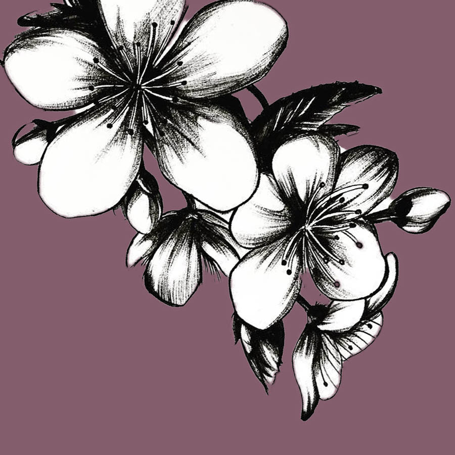 flowers-drawing-image-2-37