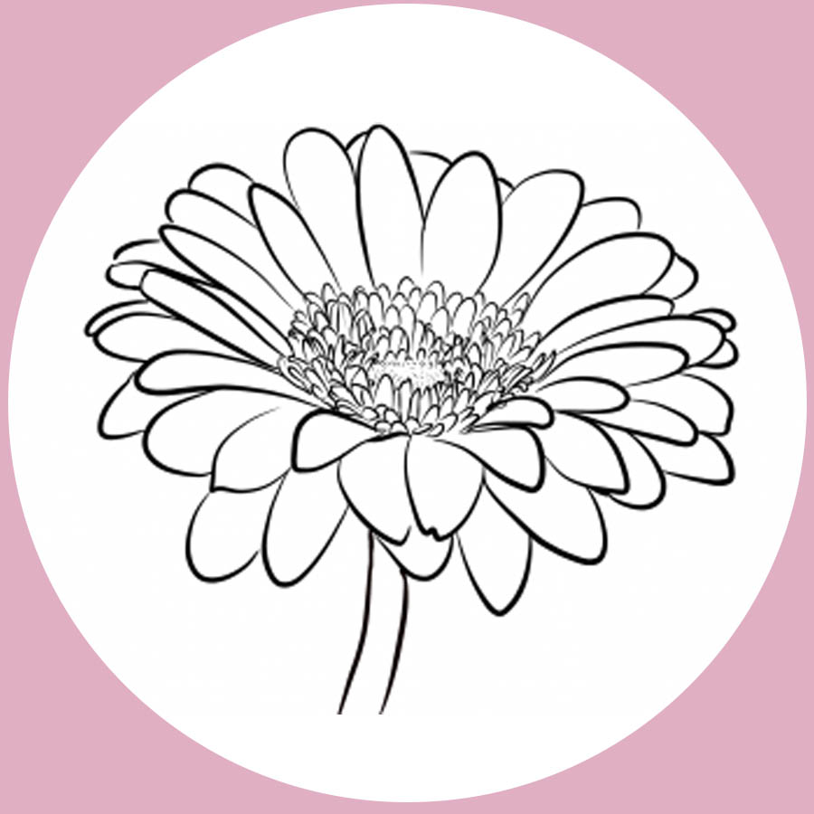 flowers-drawing-image-2-39