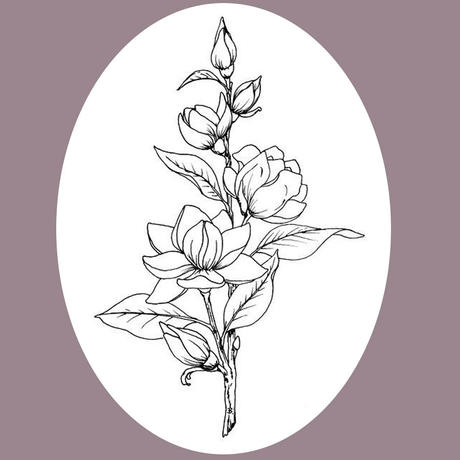 flowers-drawing-image-2-41