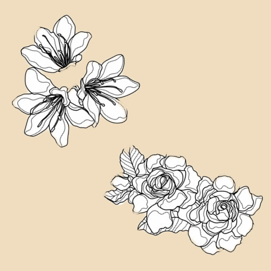 flowers-drawing-image-2-47