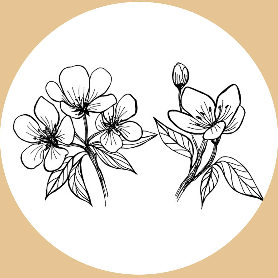flowers-drawing-image-2-48