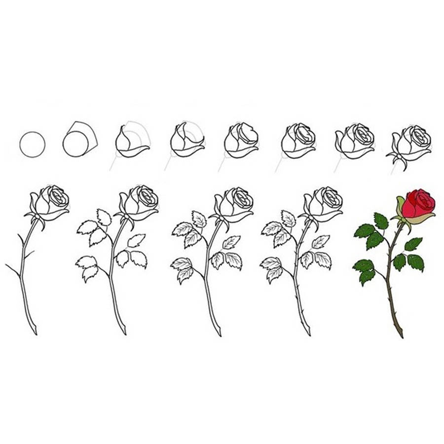 flowers-drawing-image-2-64