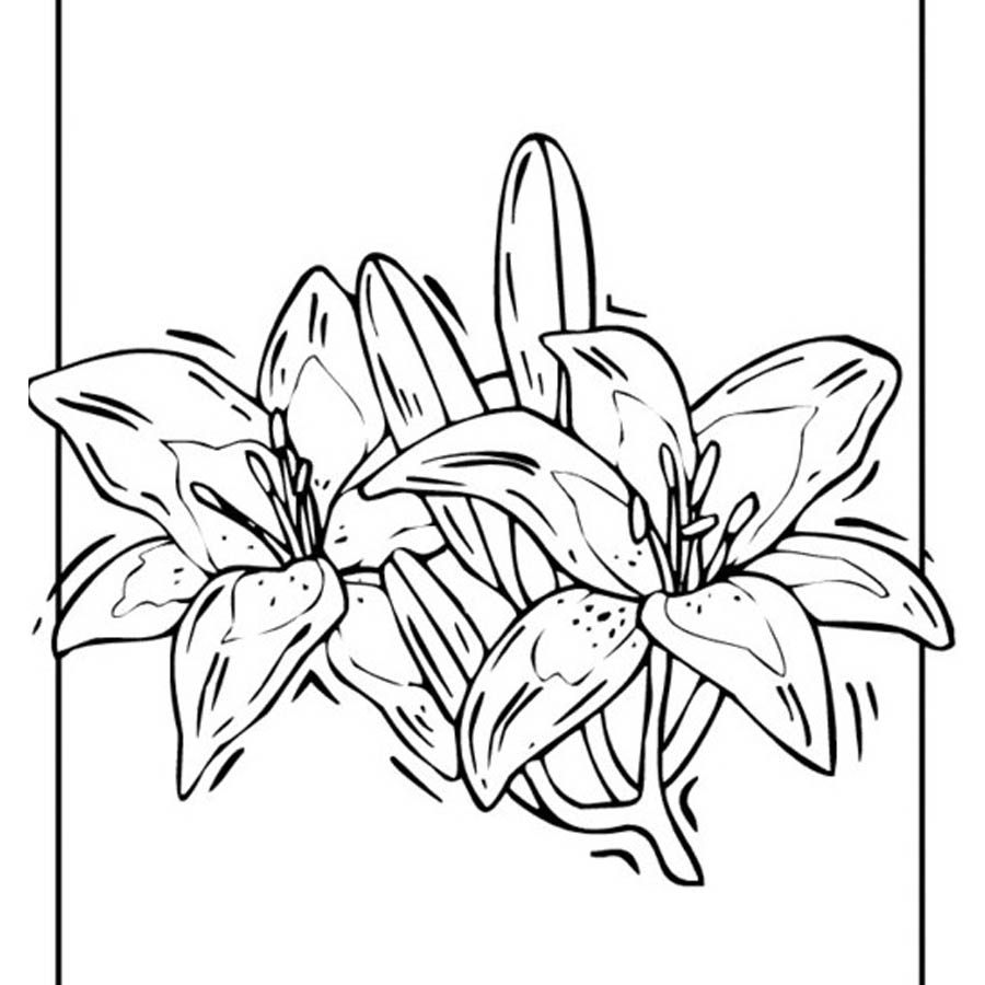 flowers-drawing-image-2-65