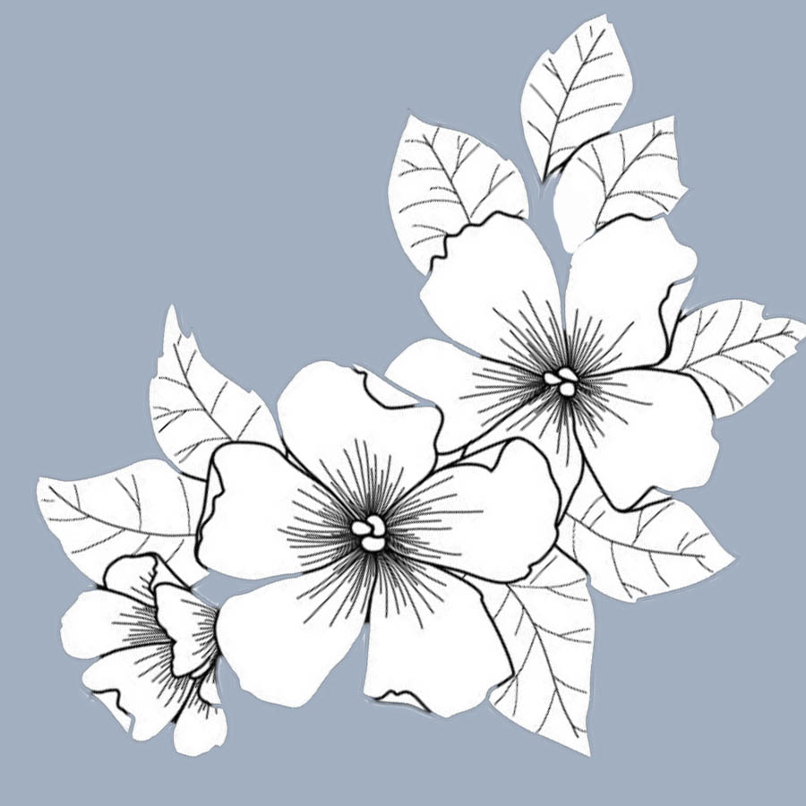 flowers-drawing-image-2-74