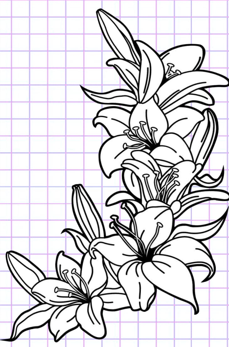 flowers-drawing-image-45