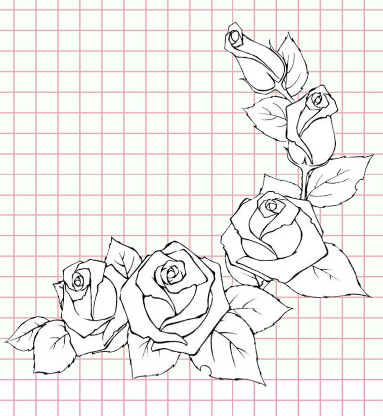 flowers-drawing-image-48