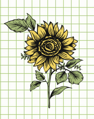 flowers-drawing-image-79