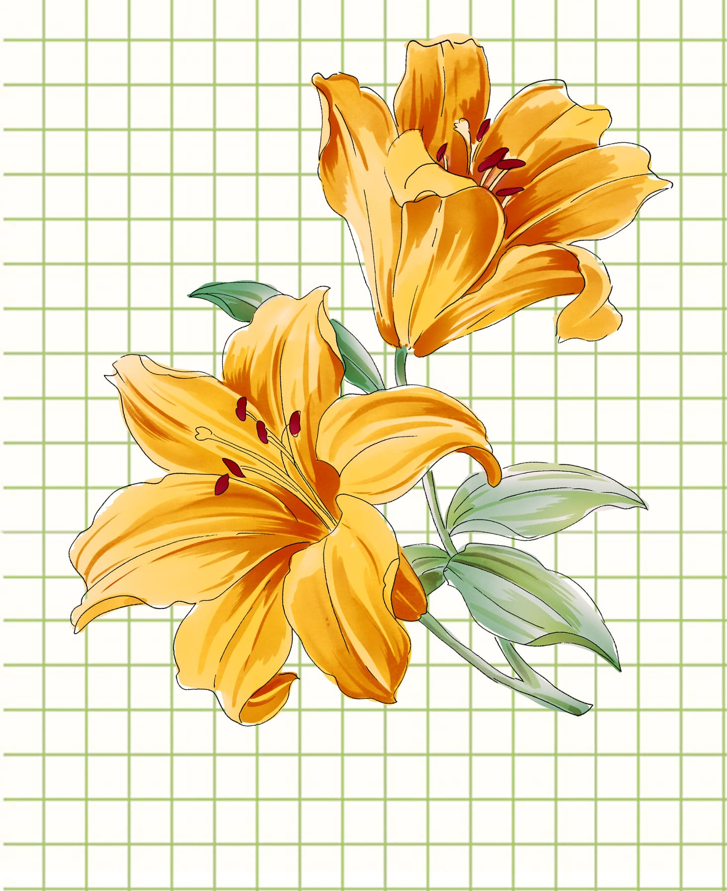 flowers-drawing-image-94