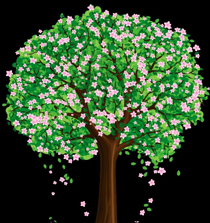 Bäume im PNG-Format auf transparentem Hintergrund