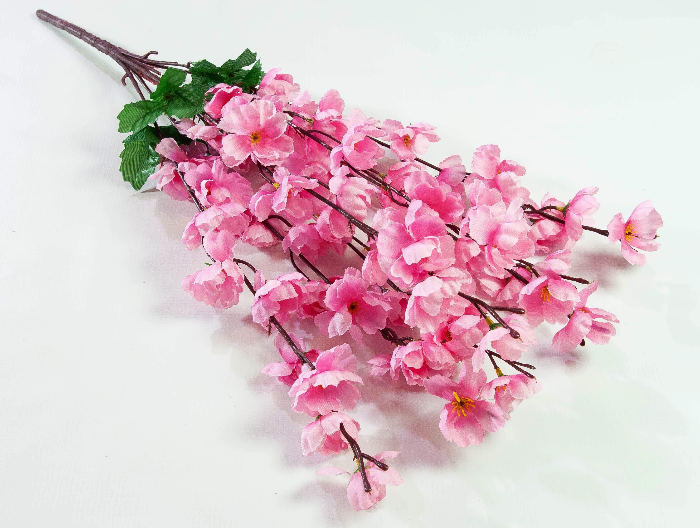 sakura-in-bloom-78