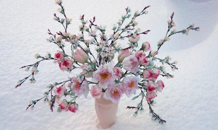 Foto di fiori di Sakura - 100 bellissime immagini gratis