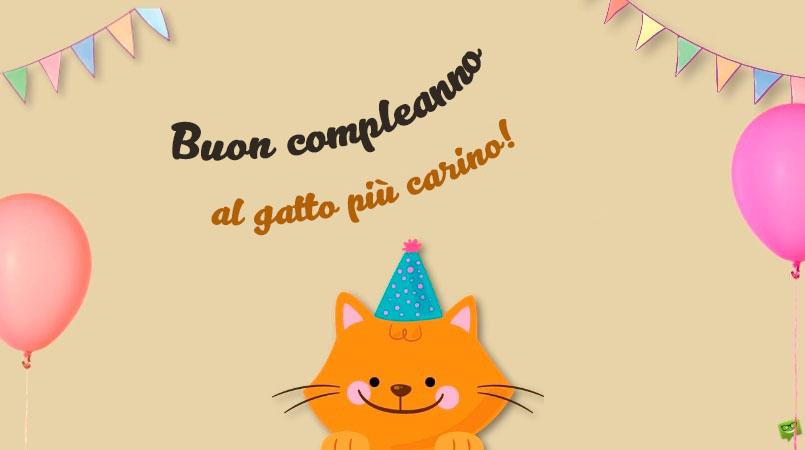 Immagini di Buon Compleanno al Gatto - 50 biglietti di auguri gratis