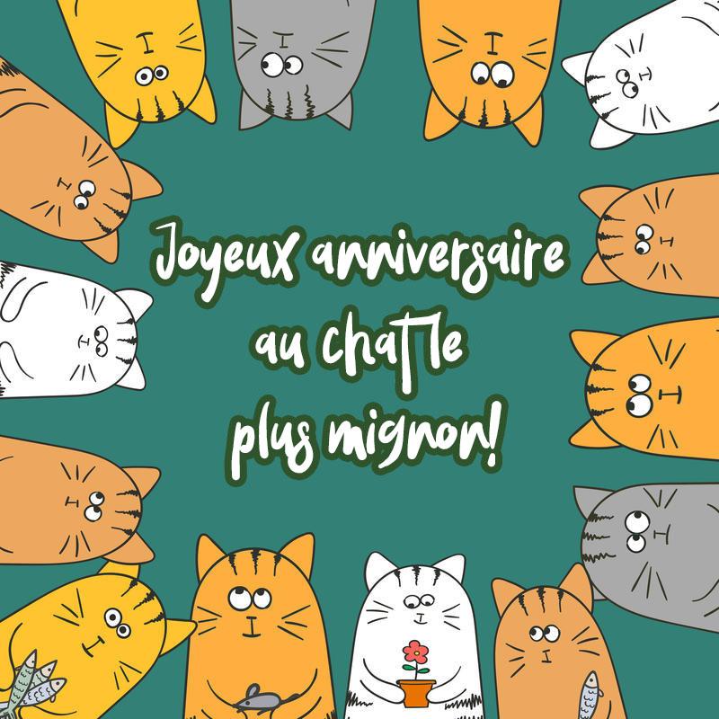Joyeux anniversaire au chat images - 50 cartes de voeux gratuites