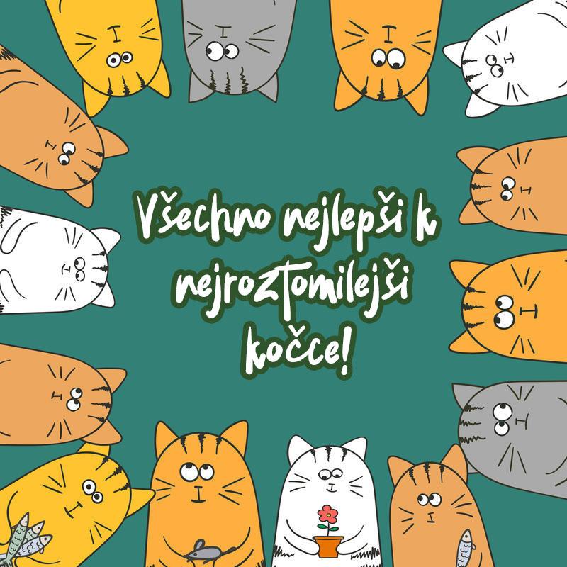 Všechno nejlepší k narozeninám kočky obrázky - 50 pohlednic zdarma