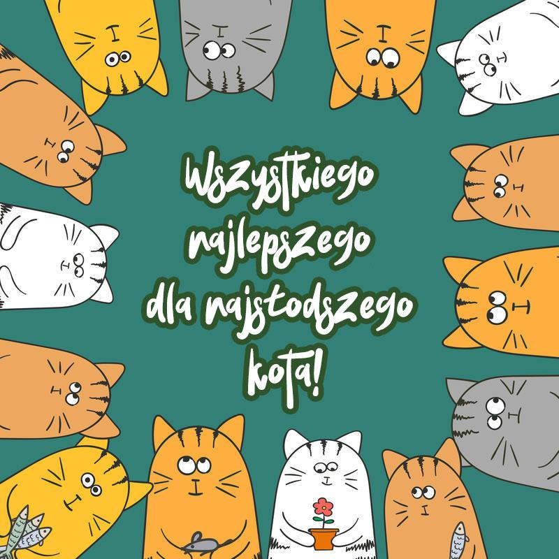 Wszystkiego najlepszego dla kotów - 50 kartek z życzeniami za darmo