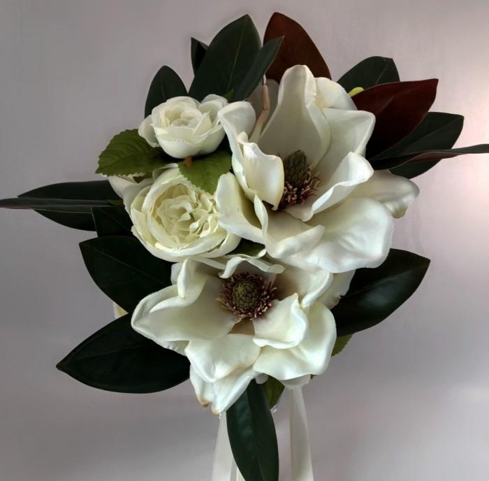 Schöne Magnolien Fotos - 100 Bilder dieser Blumen