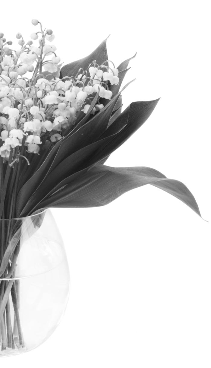 Belles photos de muguet - 100 images gratuites