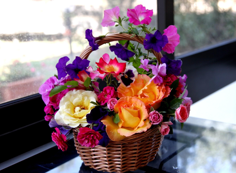 найти красивые фото цветов на первое заточка
