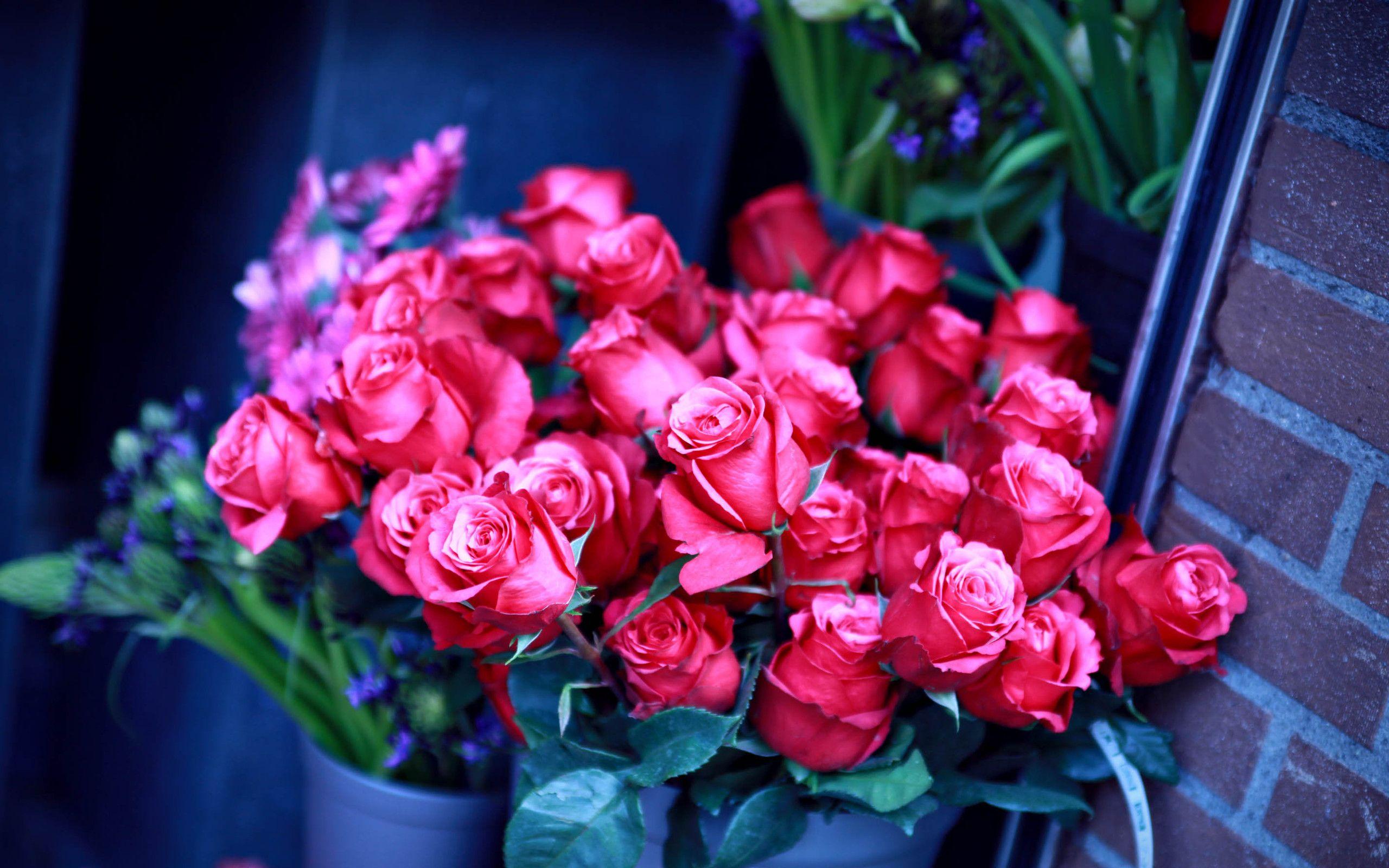 Фотографии розы букеты в высоком качестве