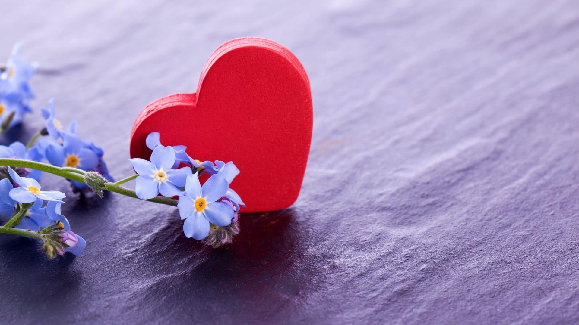 Schöne Bilder von Herzen. 240 hochauflösende Bilder kostenlos