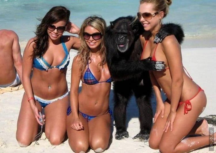 Funny Pictures of Women. 100 pieces of Funny Photos of Girls!